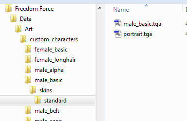 folders for skins and meshes